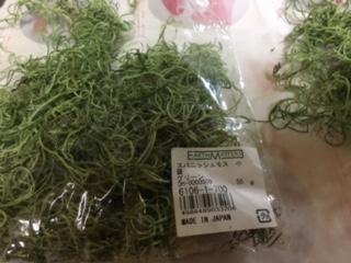 苔のようなスパニッシュモス