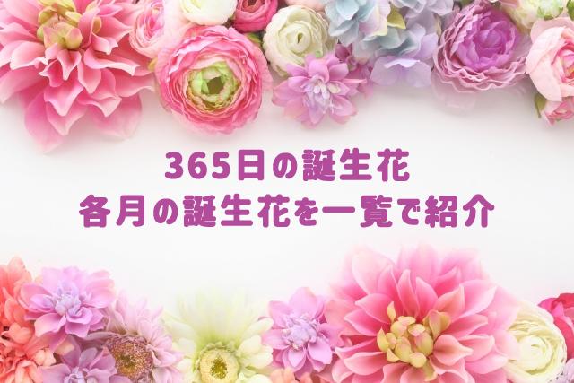 365日の誕生花を一覧で紹介 | 花の贈りものを選ぶ時に便利
