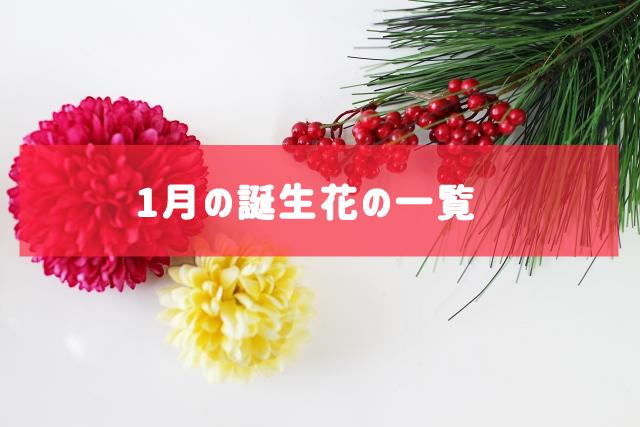 1月の誕生花の一覧 | 記念日・プレゼント・アレンジメント