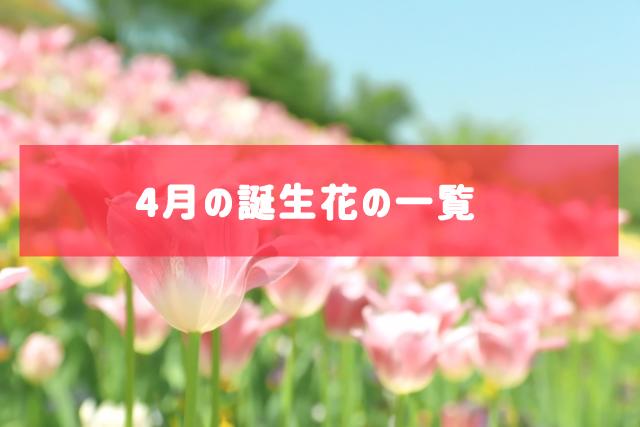 4月の誕生花の一覧 | 記念日・プレゼント・アレンジメント