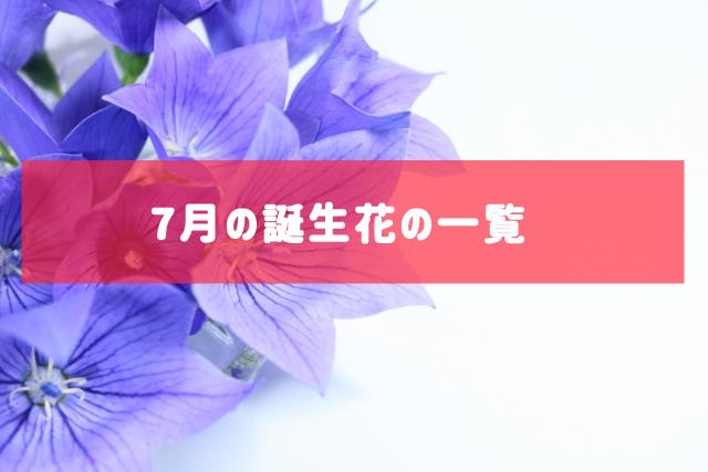 7月の誕生花の一覧 | 記念日・プレゼント・アレンジメント