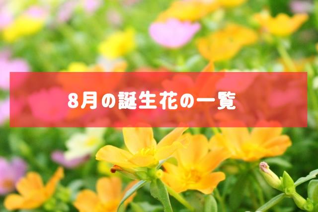 8月の誕生花の一覧 | 記念日・プレゼント・アレンジメント